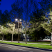 Streetlighting Market Assessment & Survey